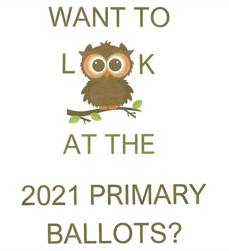Want to look at the 2021 Primary Ballots?